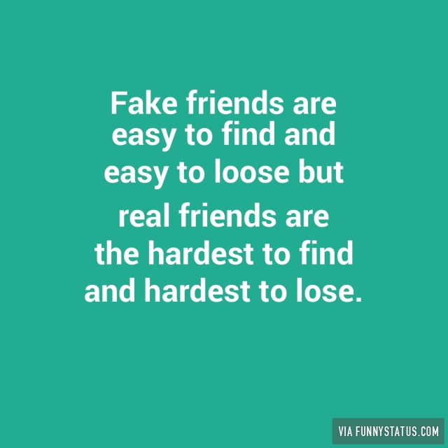 meet safer fake friends