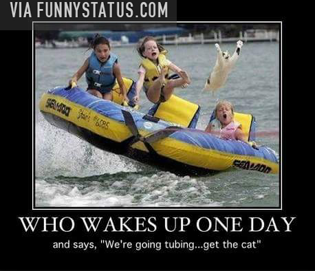 We re going tubing get the cat quot funny status
