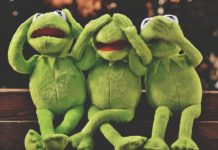 three funny frogs
