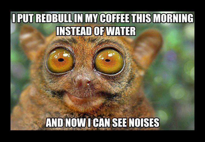 "Wide-eyed lemur with caption: ""I put Red Bull in my coffee this morning instead of water and now I can see noises."""