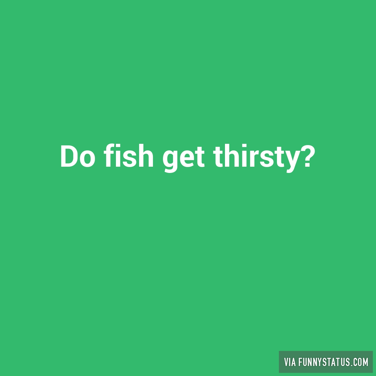 do fish get thirsty funny status