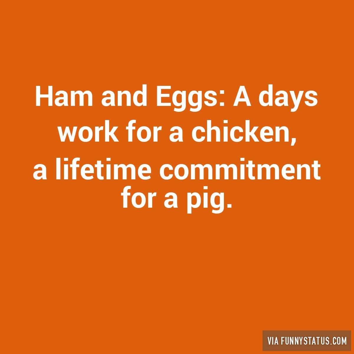 lifetime commitment