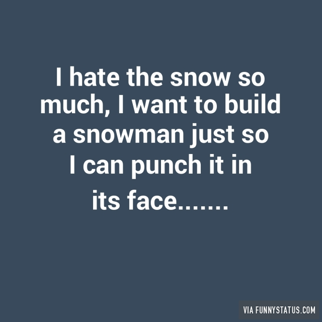 I hate the snow so much i want to build a snowman for I want to make a snowman