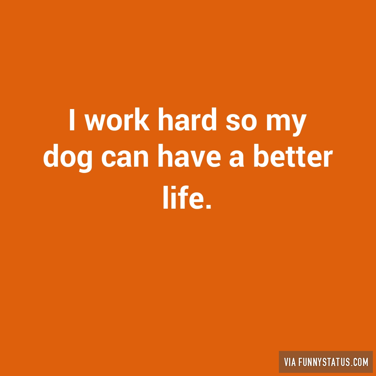 i work hard so my dog can have a better life 3021 i work hard so my dog can have a better life funny status