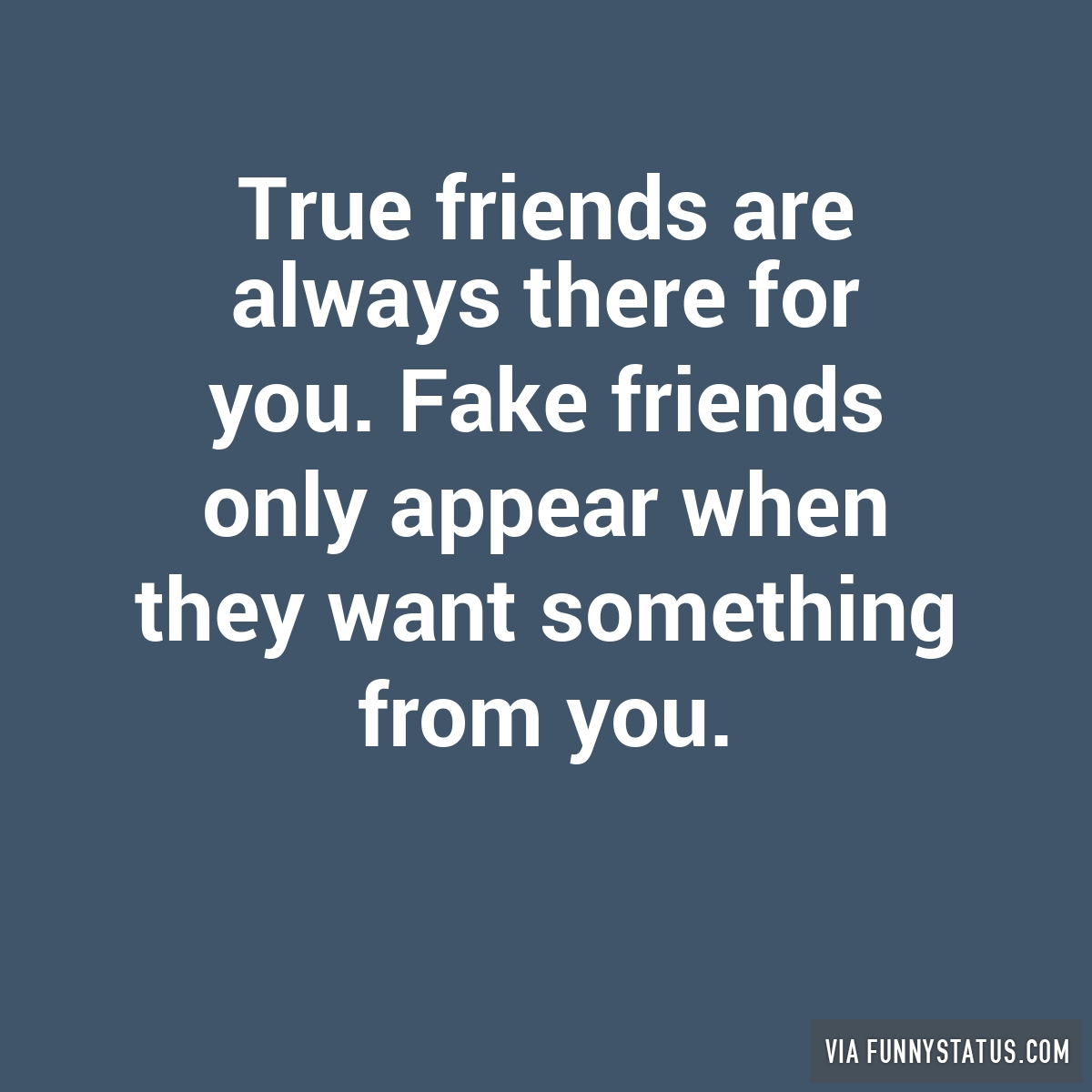 Funny Memes About Fake Friends : True friends are always there for you fake